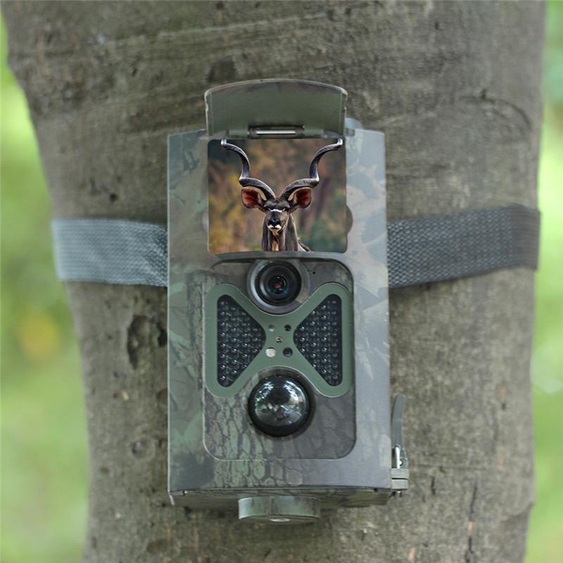 Wildlife Trail Camera 1