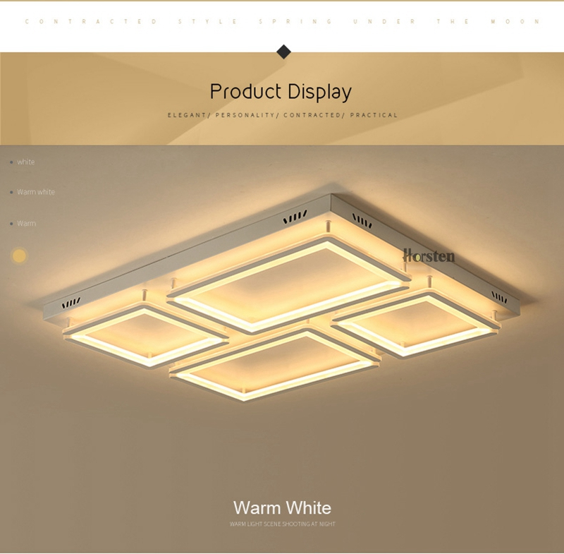 Modern Led Ceiling Light For Living Room Bedroom Kitchen Dimmer Simple LED Ceiling Lamp Home Lighting (11)