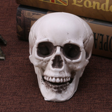 Mini Plastic Human Skull Decor Prop Skeleton Head Halloween Coffee Bars Ornament(China)