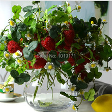 6pcs Display Artificial Strawberry Fruit Plant Wedding Home Office Furniture Decor Red FL1672(China)
