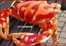 huge lovely crab toy plush sea crab doll red crab toy gift about 80cm(China)