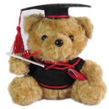 1pc 25cm Cute Teddy Bear Plush Toy Staffed Graduation bear with Docorial Hat Plush Bear Doll Graduation Gfit Brinquedos