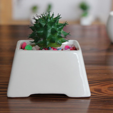Christmas Decor 1Pc White Ceramic Flowerpots Plants Flowers Vase Container Micro Garden Decoration Small Bonsai Pots for DIY(China)