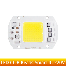 LED COB Bulb Lamp 5W 20W 30W 50W LED Chip Beads 110V 230V Input IP65 Smart IC Fit For DIY LED Flood Light Cold White Warm White (China)