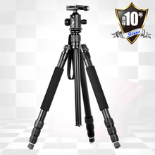 pro Sinno Q-2428Z Professional SLR tripod with a short axis tripod for macro max load 15KG Wholesale  fast shipping