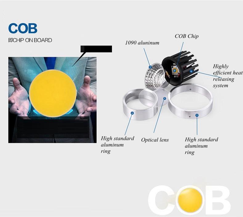 COB spot light (17)