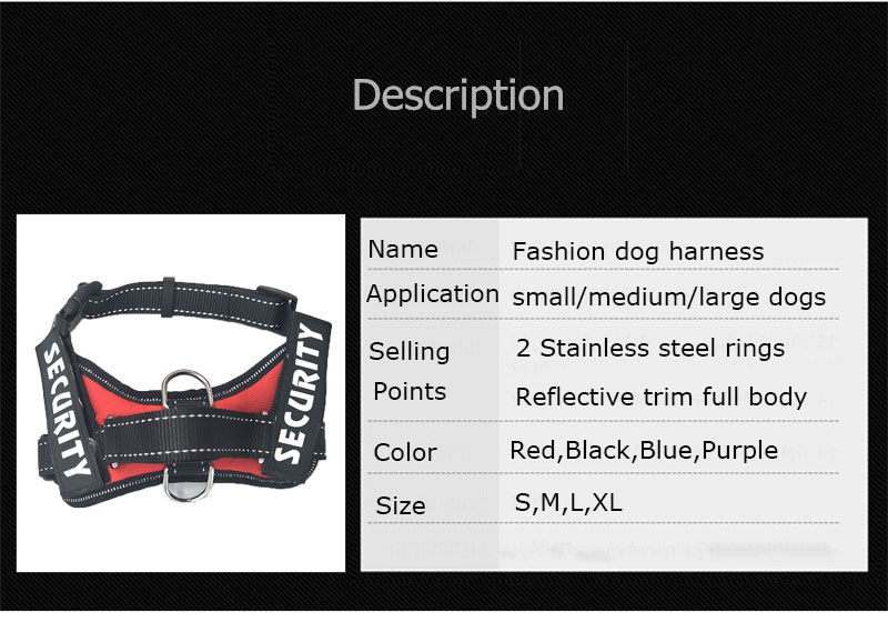 Harness for dogs of a small dog
