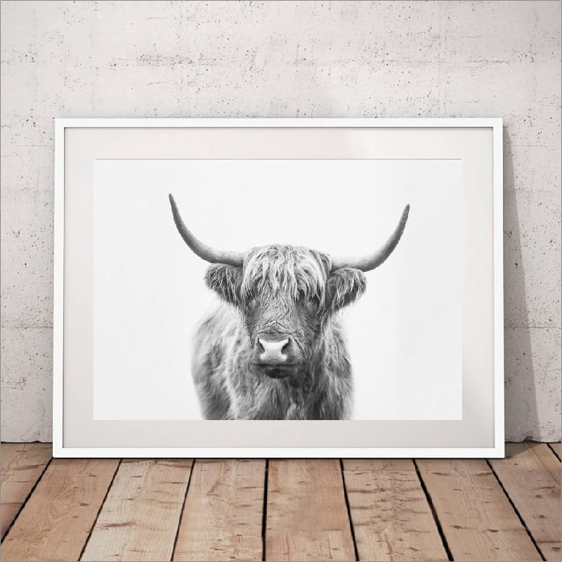 Bull canvas print wall art