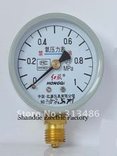 Dial diameter: 60mm 0-1Mpa Oxygen Pressure Gauges(China)