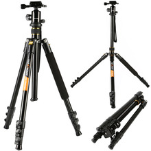 K&F CONCEPT New Arrive Professional 4 Section SLR Camera Tripod Photography Package Tour Portable Digital Tripod + Ball Head(China)