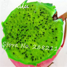 New arrive!100 particles Rare Green Dragon Fruit Pitaya seeds Organic sweet delicious fruit and vegetable seeds diy home garden