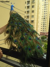 artificial peacock large 120cm beautiful feathers peacock bird,handicraft,home garden decoration gift a2508(China)