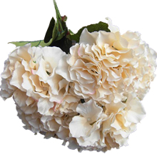 "Artificial Hydrangea Flower 5 Big Heads Bouquet (Diameter 7"" each head) Champagne color"