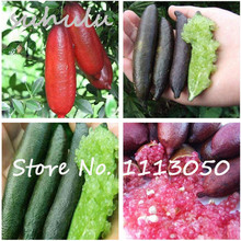 Free Shipping 50Pcs Novel Finger Limes Citrus Pomegranate seeds Delicious sweet fruit seeds for home garden plant mix colors