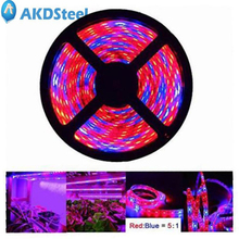 AKDSteel 5M 12V LED Plant Grow Strip Light Full Spectrum Rope Light for Vegetable Cultivation Horticulture Industrial Seedling(China)