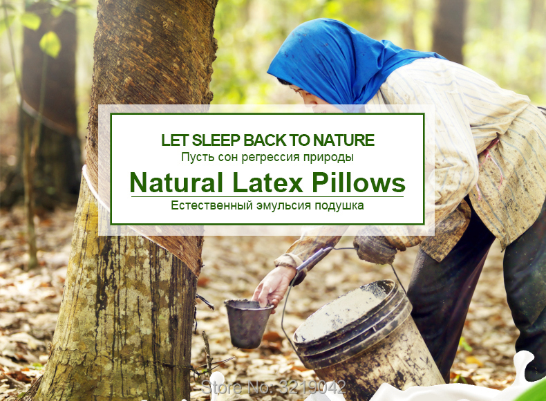 Massage-Latex-Pillows-790-01_01