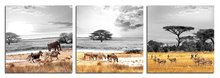BANMU 3Pcs Modern Giclee Prints Artwork Africa Animals Zebra Elephant Pictures Photo Paintings on Canvas Wall Art for Decor