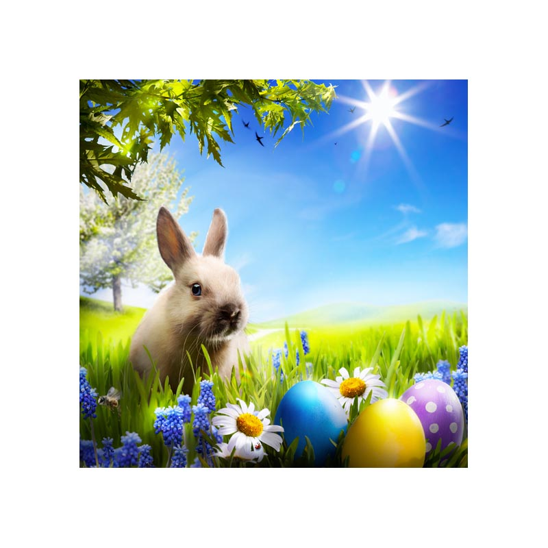 pastel Easter photography backdrops printed of cute rabbits and vibrant spring 5X5ft GE-113<br><br>Aliexpress