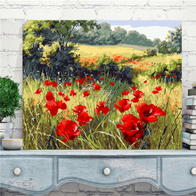 Wild red poppy flower pictures by numbers new design canvas oil painting by numbers fashion pictures on the wall art AL009(China)