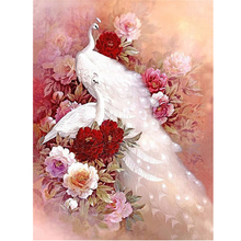 Animal Series 5D Diy Diamond Painting Cross Stitch Two White Peacock Diamond Embroidery Square Full Drill Mosaic Picture Peony(China)