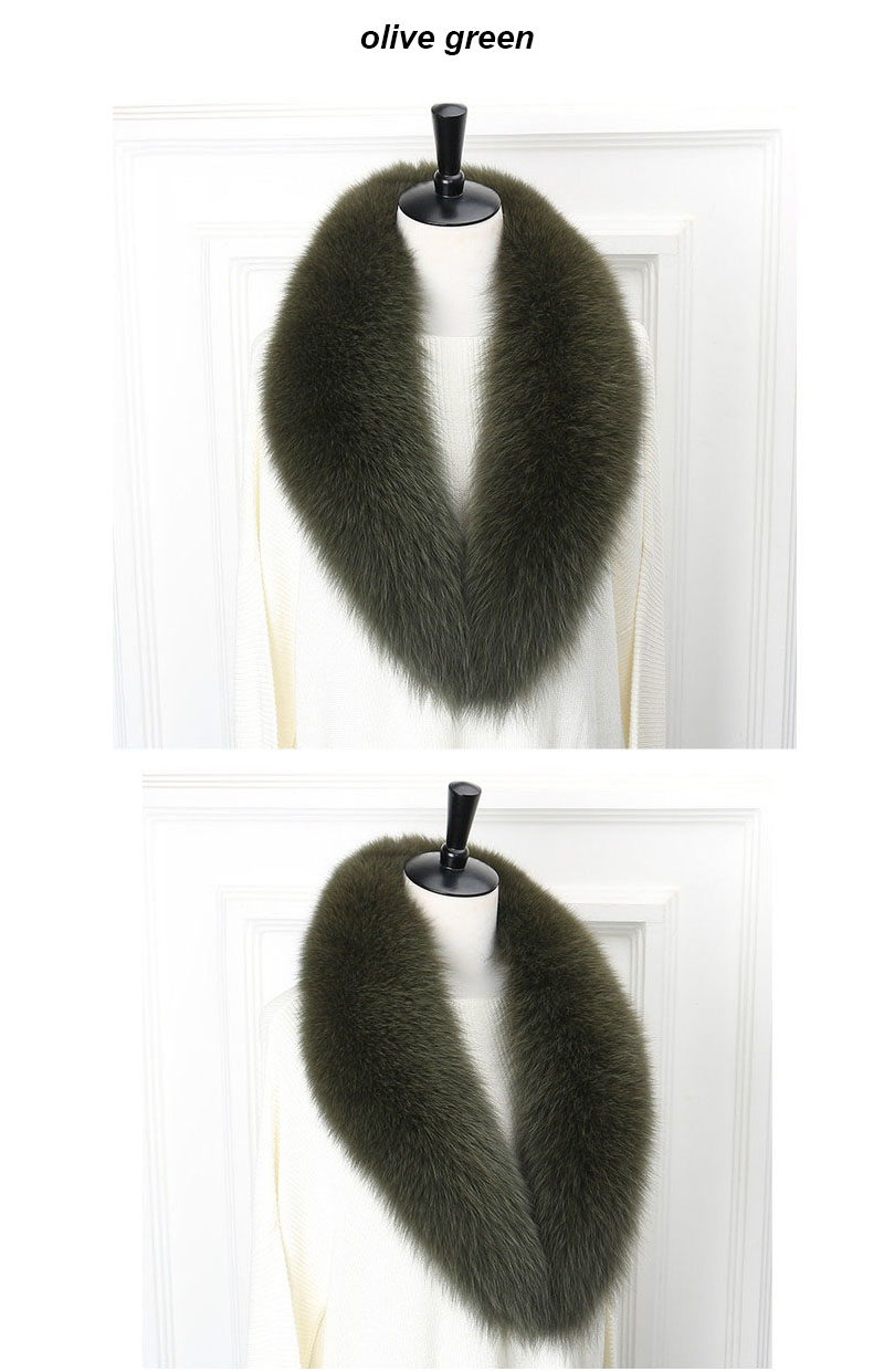 fox collar 110 olive green