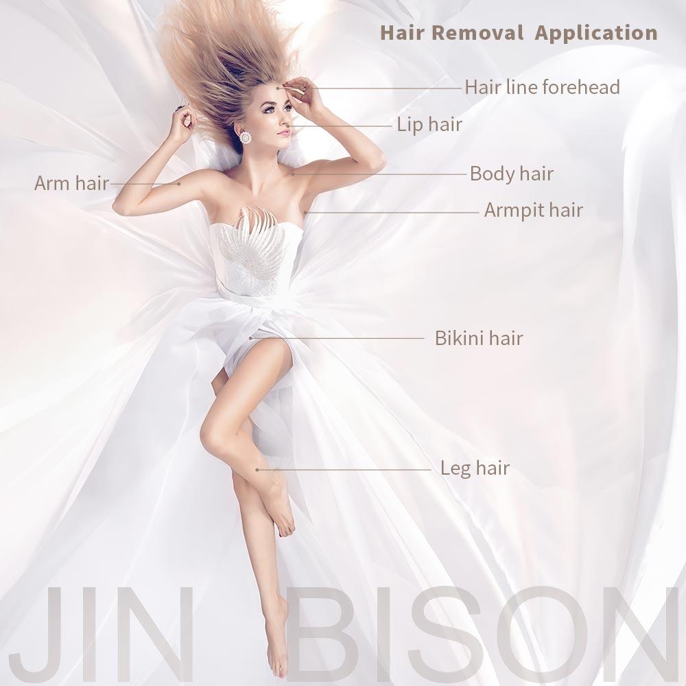 JIN-BISON-06