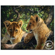 5D Diy Fully Diamond Embroidery Cross Stitch Mosaic Animals Decorative Painting Round Rhinestones Curiosity Of Lion Cub Pictures(China)