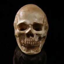 Ghost Evil Homosapiens Skull Skeleton Head Halloween Prop Antique Yellow