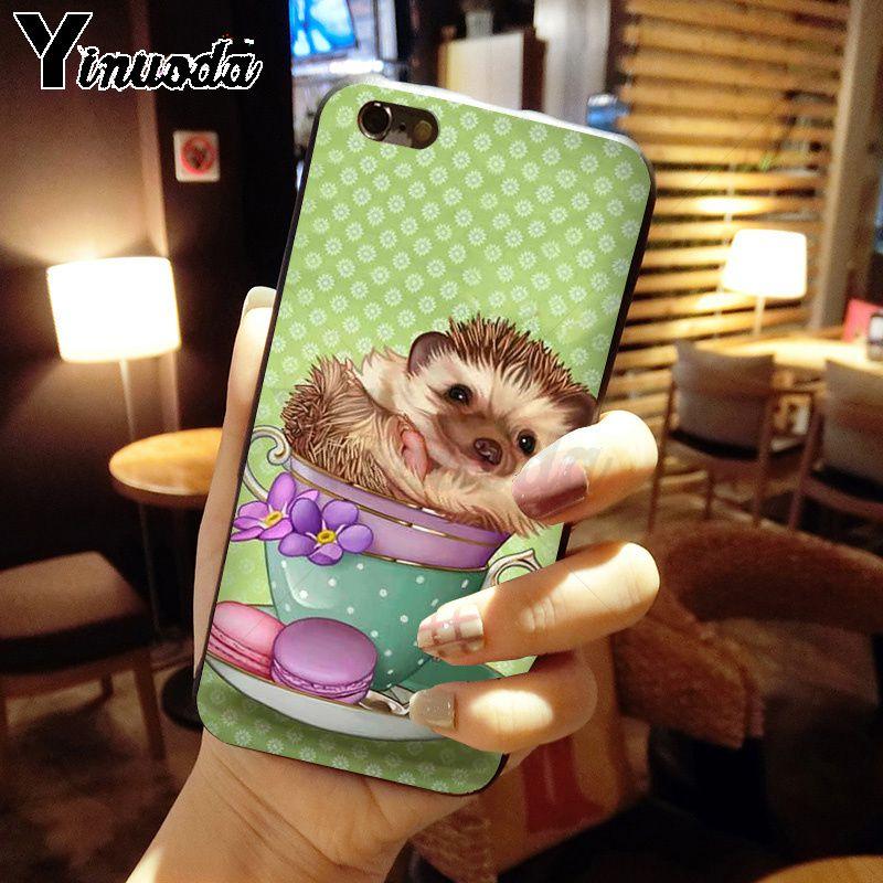 Hedgehog ride a bike Cute in Teacup Animal Art
