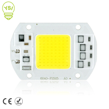 LED COB Chip 5W 10W 20W 30W 50W LED Lamp Chip 220V 240V Input IP65 Smart IC For DIY LED Flood Light Spotlight Cold/Warm White
