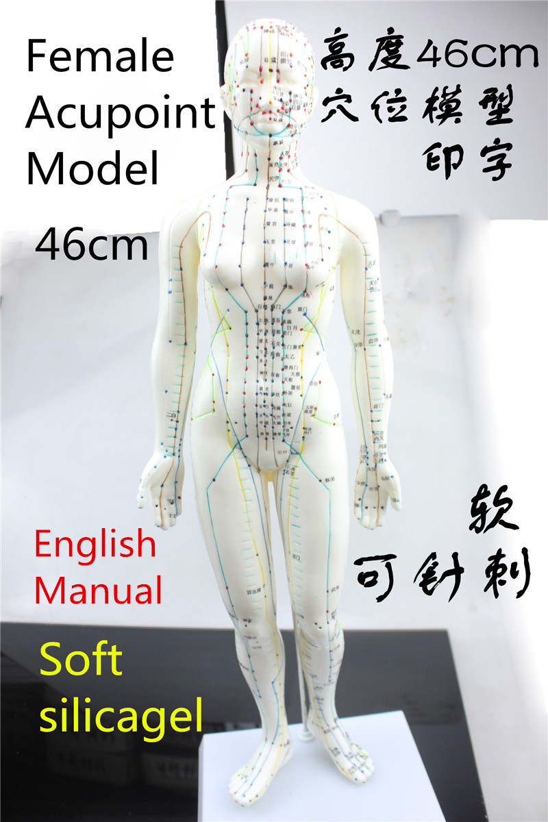 HD Soft silicagel Acupuncture Model 46cm female with Base Human acupuncture meridians model Acupoint Model Acupuncture massage<br>
