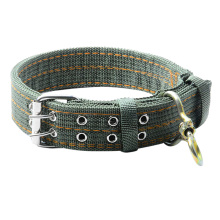 2017 L/XL Size Army Green Canvas Pet Dog Collar for Large Dogs Collars Double Row Buckle Design Strong and Durable Pet Products