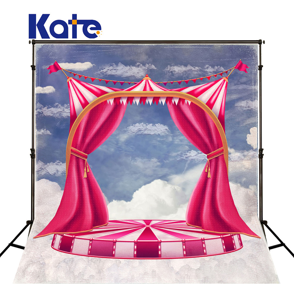 10x10ft Kate Cartoon Stage Backdrop Pink Newborn Photography Background blue sky clouds Backdrops for Photo Studio<br>