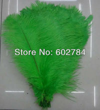 "Free Shipping 50pcs/lot green ostrich drab feather ostrich plumes 16-18"" 40-45cm for wedding decoration(China)"