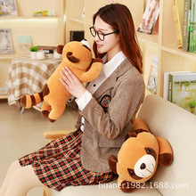 55cm Brown raccoon software pillow doll raccoon plush toy High quality retail(China)