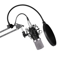 Microphone bm800 offer set network K song KTV professional condenser microphone for mobile phone + computer + recording + host m
