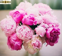 2017 5D DIY Diamond Painting Cross Stitch peony  Flowers Resin Needlework Home Decor Full Rhinestone 3D Diamond embroidery RD079