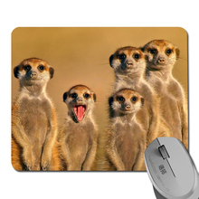 Novelty design hot sale low price creative optical mouse pad / notebook mouse pad