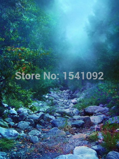 10x10ft Customize free shipping Thin vinyl cloth photography backdrop scenery computer Printing background for photo studio f166<br>