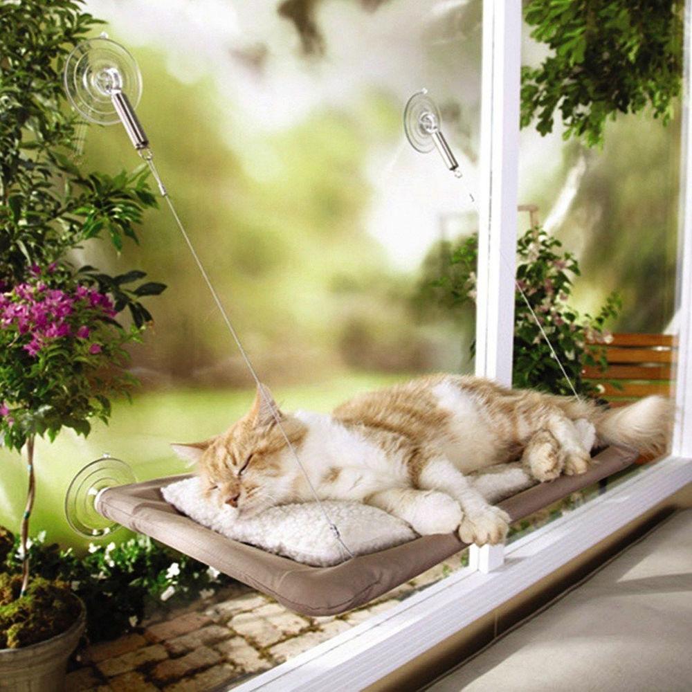 cat window perch cat hammock Cat Hammock -10 Best Cat Hammocks For 2018 HTB1Z4kfSFXXXXbVXpXXq6xXFXXXA