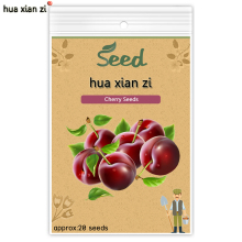 HUA XIAN ZI Cherry Seeds Bonsai Tree Cherry Fruit Seed Potted Plant DIY Home Garden 20 seeds/bag