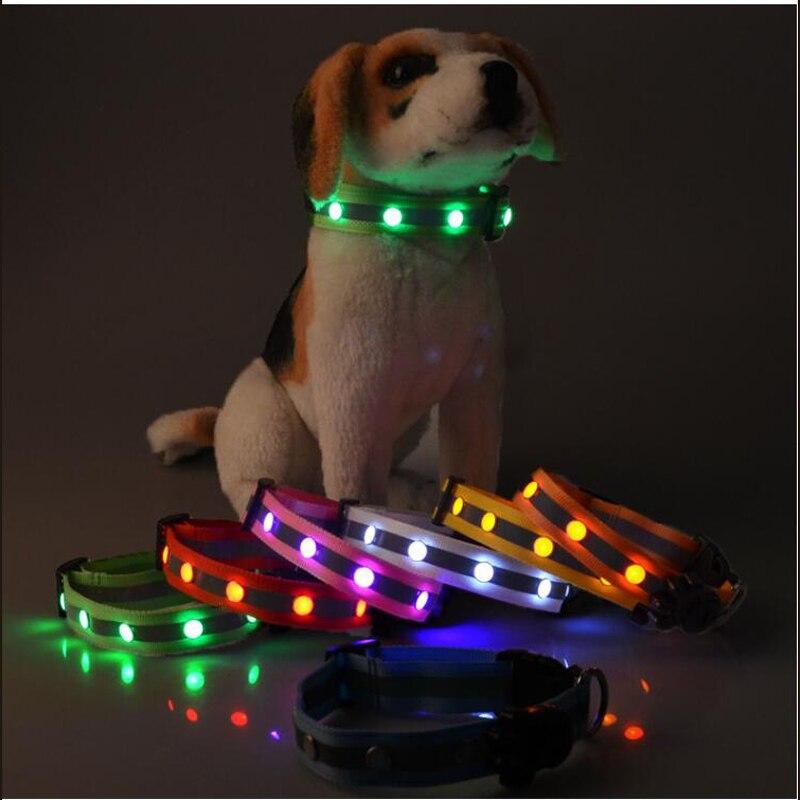 Led dog collar (10)