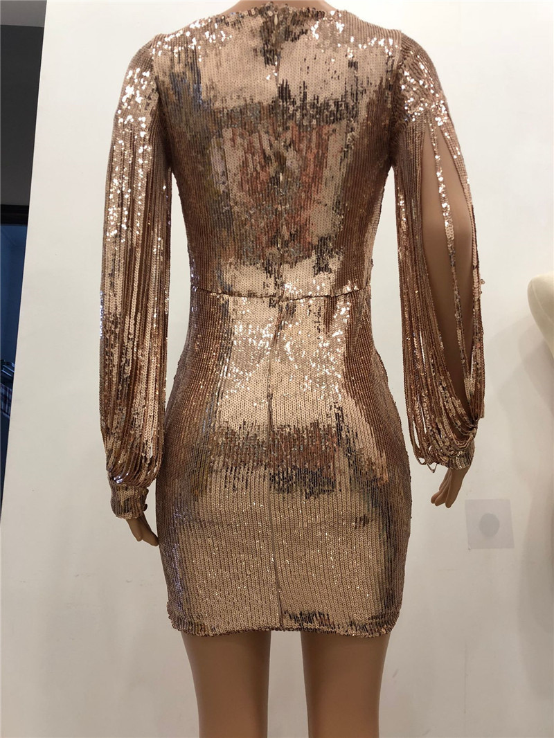 2018 New Women Sexy Tassel Detail Sequin Party Dress Slit Sleeve V-neck  Club Mini Dress Autumn Long Sleeve Elegant Sparkly Dress 8ff2c4515589