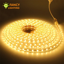 Led strip light 220V Waterproof diode tape SMD5050 60chips/m rgb warm/cold white Blue led light for outdoor home decor ledstrip(China)