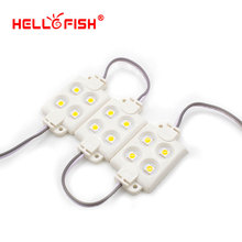Hello Fish 20 pcs DC12V 5050 4 LED Modules Filled with Plastic White/Warm White Waterproof IP65 For LED Signs(China)