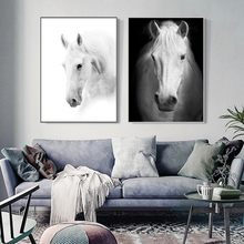 3pcs Modern Art White Horse Black and White Picture A4 Print Canvas Poster Wall Photography Photo Restaurant Decorative Painting(China)