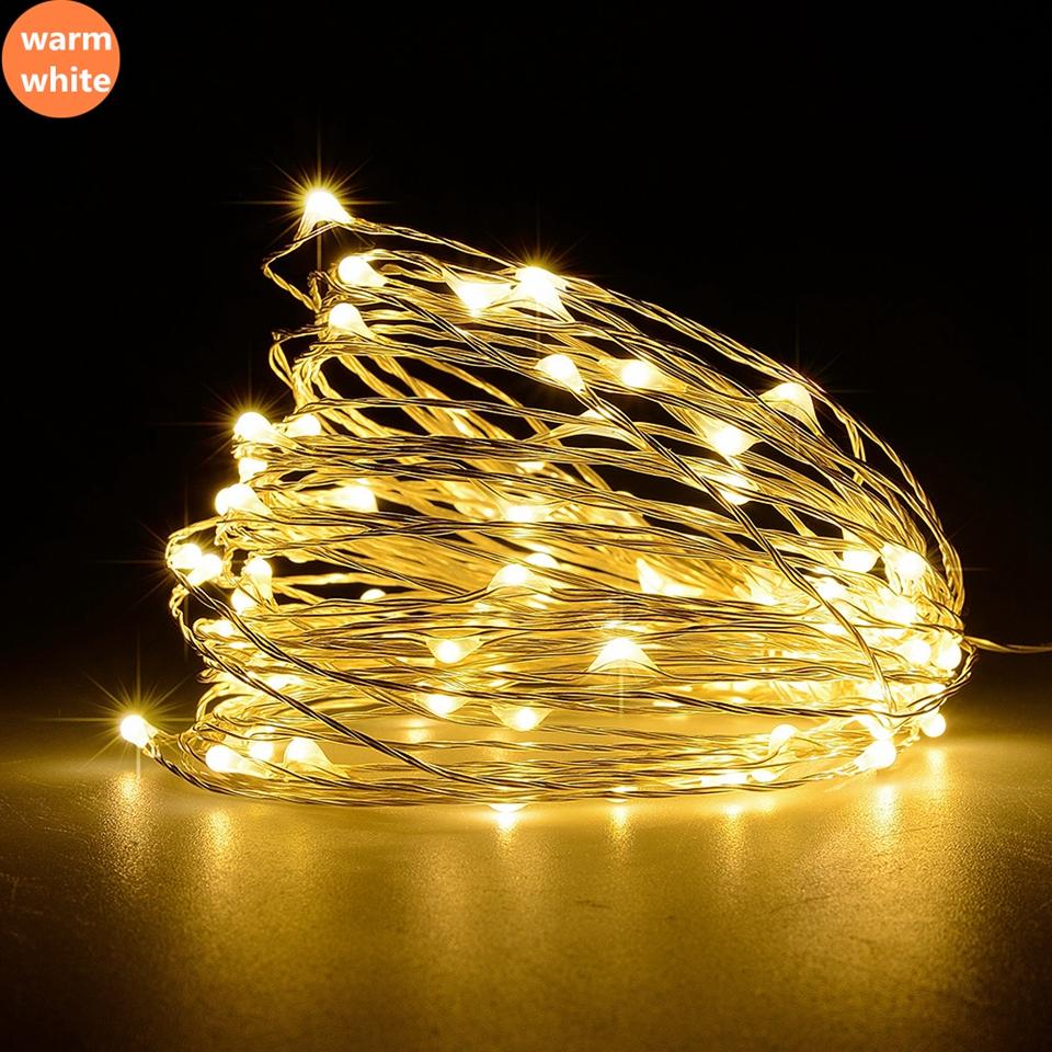 string light  (2)