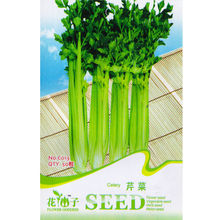 Celery Seed * 1 Packet 50 Seeds * Apium graveolens var. dulce * Half-hardy vegetable seeds * Non GMO Seed * Free Shipping