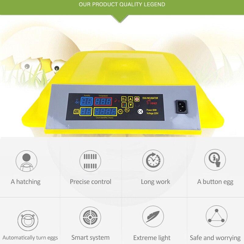 Automatic Egg Incubator China (3)