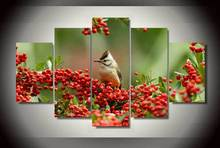 Hot Sales HD Printed Red Fruits And Birds Painting Canvas Fashion Room Decoration Print Picture Canvas Unframed Artworks(China)